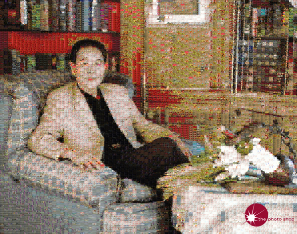 Mr Huang: Mosaic (9825 images)